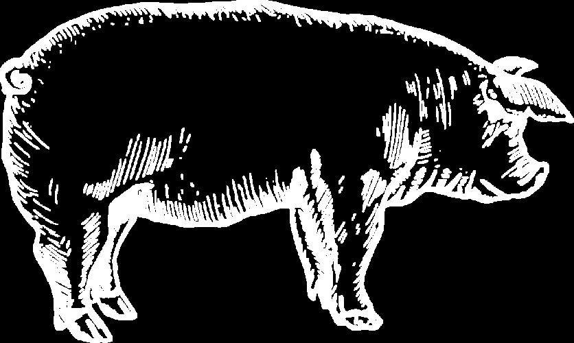 10 kg Schweinefleisch vom Strohschwein